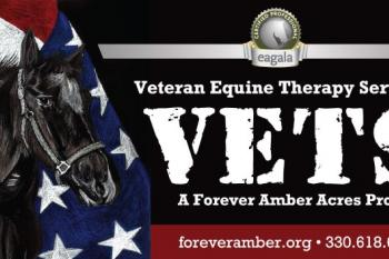 Veterans Equine Therapy Services Program